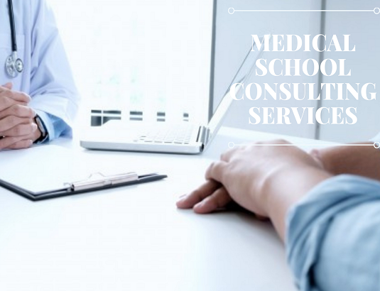 Medical School Consulting Services