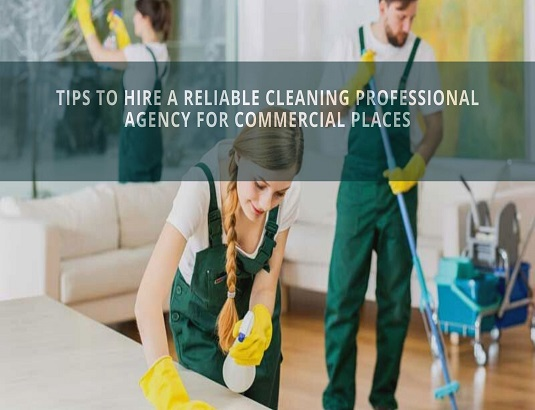 cleaning professional agency